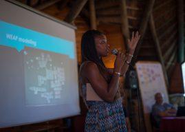 Impact Stories highlight FRACTAL's learnings